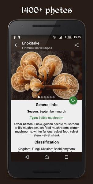 Скачать Справочник грибника на Андроид screen 1