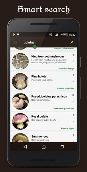 Скачать Справочник грибника на Андроид screen 2