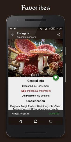 Скачать Справочник грибника на Андроид screen 4