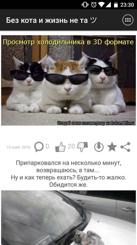 Скачать Без кота и жизнь не та на Андроид screen 1